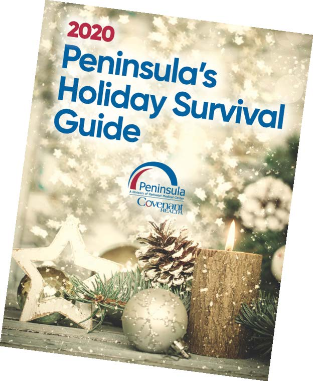 cover of Holiday Survival Guide